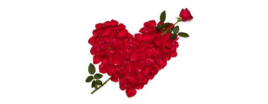 Amar a cuatro rosas